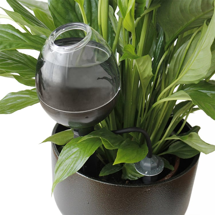 Blomvattnaren vattnar växterna när du är borta